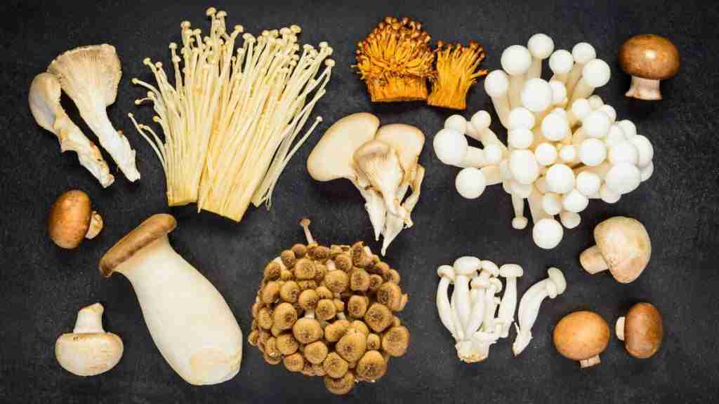 These 9 Mushrooms Have The Most Protein