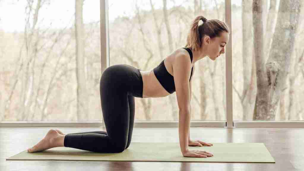 Yoga Poses for the Digestive System